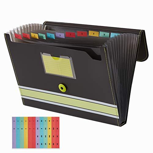 Sooez Expanding File Folder Paper Organizer with Sticky Labels, 13 Pockets File Organizer Accordion File Organizer, Letter/A4 Paper/Document Folder Organizer, File Organizer File Holder, Lime Green