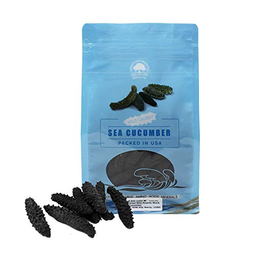 DOL Wild Caught,Sun Dried Atlantic Black Pin Sea Cucumber All Natural Nutritious,大西洋岩刺參 小黑刺海參 (Medium 1lb/bag)