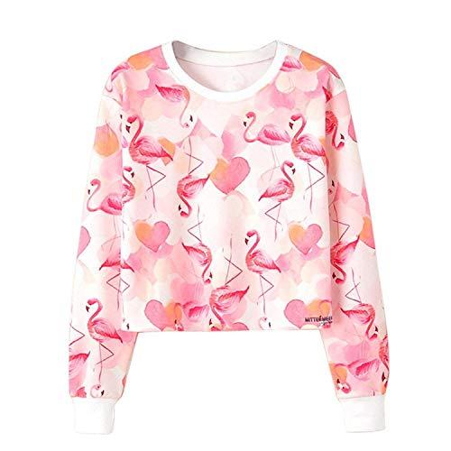 Damen Pulli Elegante Frühling Herbst Longsleeve Rundhals Casual Bekleidung Sweatshirt Jumper Flamingo Kurz Oberteile Aufdruck Jungen Mädchen Young Fashion Tops