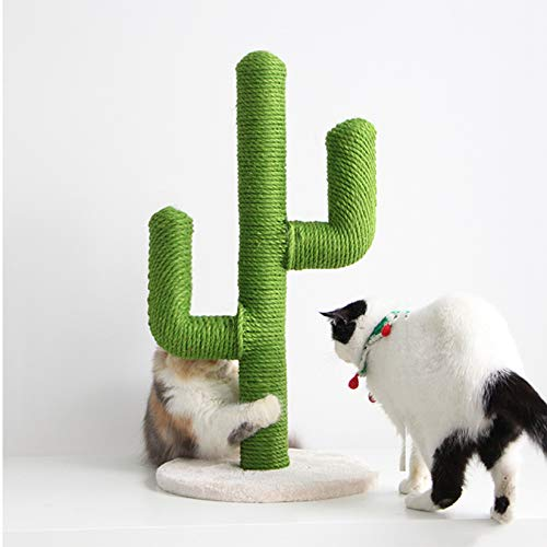 BingoPaw alberoTiragraffi per Gatti, Questa Elegante tiragraffi a Forma di Cactus per Gattini Albero rampicante con Base Robusta per felini da Piccoli a Medi