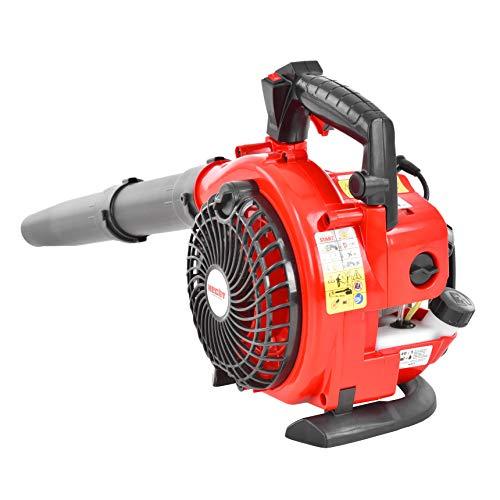 HECHT Benzin Laubbläser - 2in1 - (2-Takt Motor 1 PS / 0,74 KW) - umbaubar zum Laubsauger - mit Laubhäcksler und großem Fangsack