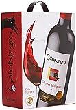 GatoNegro Cabernet Sauvigno Vin du Chili Central Valley 3 L