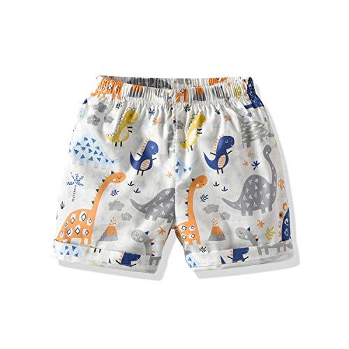 YJWFHPU Swim Shorts for Boys Little Boys White Dinosaur Swim Trunks Beach Shorts for Age 2 7 Years Boys Summer Boardshorts