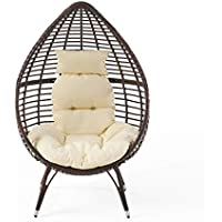 Christopher Knight Home Cutter Teardrop Wicker Lounge Chair with Cushion (Multibrown)