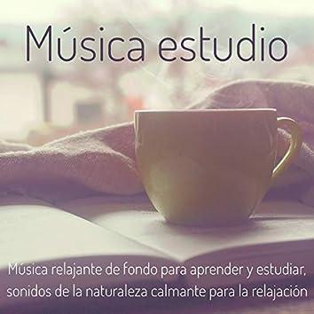 Música estudio – Música relajante de fondo para aprender y estudiar, sonidos de la naturaleza calmante para la relajacion