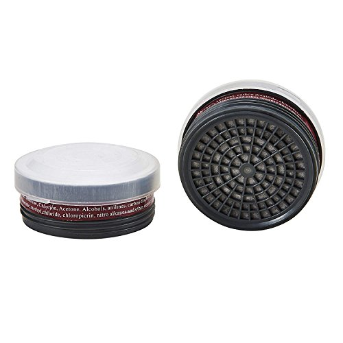 Organic Vapor Activated Charcoal Air Filter (2 Pcs LDY3 Filter Cartridges)
