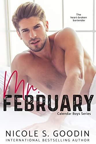 Mr. February: A One Night Stand Romance (Calendar Boys Book 2)