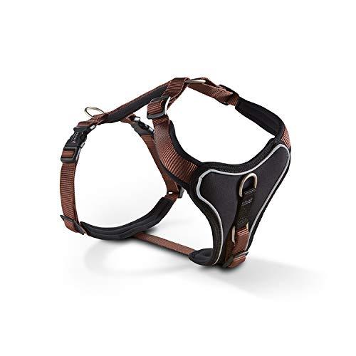 Wolters | Geschirr Professional Comfort in Tabac/Schwarz | Brustumfang 70 - 85 cm