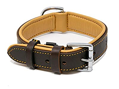 "Riparo Genuine Leather Padded Dog Heavy Duty K-9 Adjustable Collar 1.5"" Wide Fits 18"" - 21"" Neck (Large, Brown)"