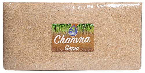 "The Chanvra Hemp Grow Mat (1000 GSM) – 10 x 20"" Microgreens Growing Pads for Sprouting, Wheatgrass - Hydroponic Growing Medium Microgreen Matting – More Natural Alternative to Coco Coir Peat Fiber"