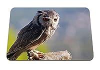 22cmx18cm マウスパッド (フクロウスティック座っている鳥捕食者) パターンカスタムの マウスパッド