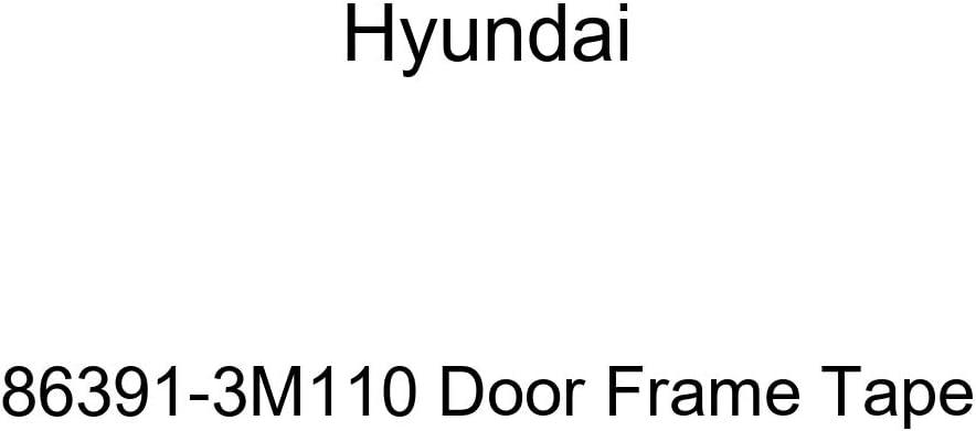 Genuine Topics on TV Hyundai 86391-3M110 Frame Door New life Tape