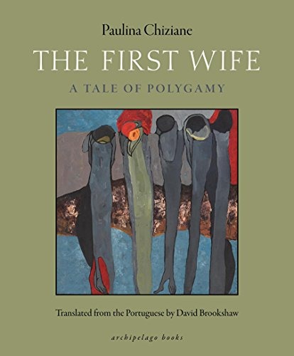 The First Wife: A Tale of Polygamy (English Edition)