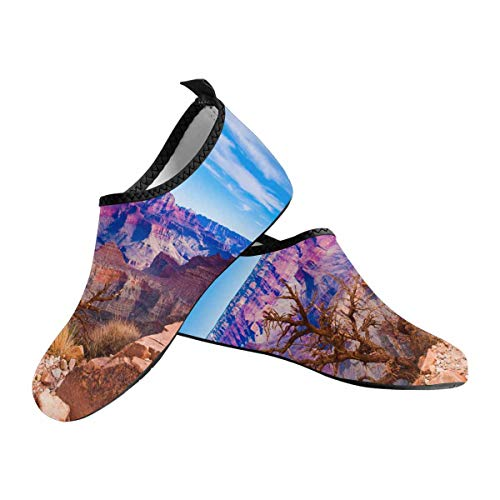 INTERESTPRINT Grand Canyon National Park in Arizona Trail Running Barefoot Shoes Lightweight Gym Athletic Walking Shoes US11~US12