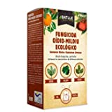 Fungicida Oídio-Mildiu 100gr Batlle
