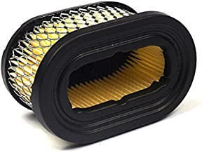 Briggs & Stratton 497725S Oval Air Filter Cartridge