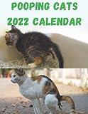 Pooping Cats Calendar 2022: Funny Animal Lover Gag Joke Gift for Women, Men, Teens | Perfect gift Ideas For dog lovers in birthday or Christmas