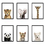 León Panda Elefante Jirafa Bebé Animales Lámina Poster Safari Animales Imágenes Lienzo Pintura Niños Habitación Vivero Decoración de pared / 20x30cmx6Pcs-Sin marco