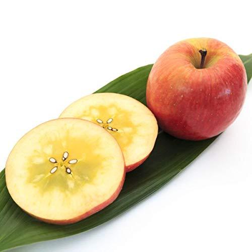 ご予約 青森県産 幻のりんご 究極の蜜入リンゴ こみつ 林檎 約2kg