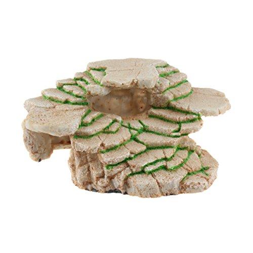 Emours Plate-forme en résine pour aquarium en forme de roche de schiste avec rebord et cachette de gecko Taille M