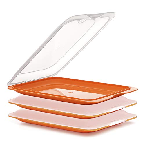 PracticFood Fresh System - Hochwertige Aufschnitt-Boxen, Frischhaltedose für Aufschnitt. Wurst Behälter. Optimale Aufbewahrung im Kühlschrank, 3 Stück Farben Orange, Maße 17 x 3.2 x 25.2 cm