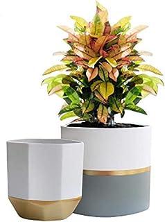 """کاشت گلدان سرامیکی سفید گلدان 6.5 """"بسته 2 ظروف، ظروف گیاهی با جزئیات طلا و خاکستری"""