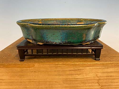 Old Mokko Green Blue Glazed Shohin Size Tokoname Cây Bonsai Pot Koyo