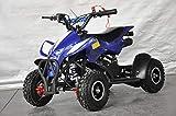 Mini quad infantil Raptor/Mini quad para niños de 3 a 8 años/Motor 49cc 2 tiempos (AZUL)