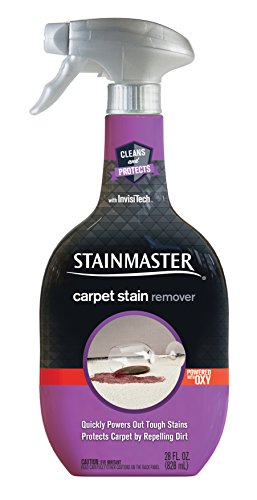 Stainmaster Carpet Care Stain Remover, 22 oz