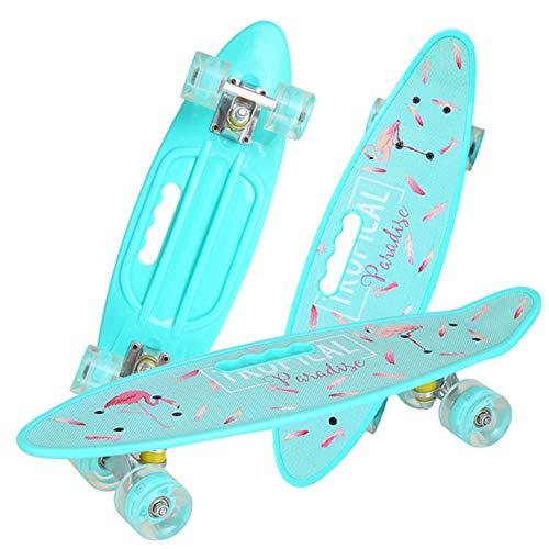 EYLIFE Mini Cruiser Skateboard Retro Komplettboard, 24