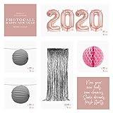 Horeca Collection [Pack Ahorro Photocall Nochevieja 2020 Gold Rose Luxury - Incluye Globos Metalizados Gold Rose 2020, Cortina Metalizada Foil, Honeycomb Rosa y Lámparas Papel