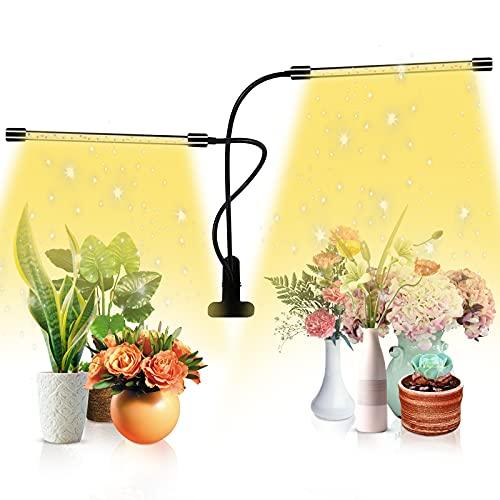 ZOROSS LED Pflanzenlampe, LED Grow Lampe Vollspektrum 40 LED, Grow Light Full Spectrum für Zimmerpflanzen, Gewächshaus Gemüse, Blume für Zimmerpflanzen mit Zeitschaltuhr
