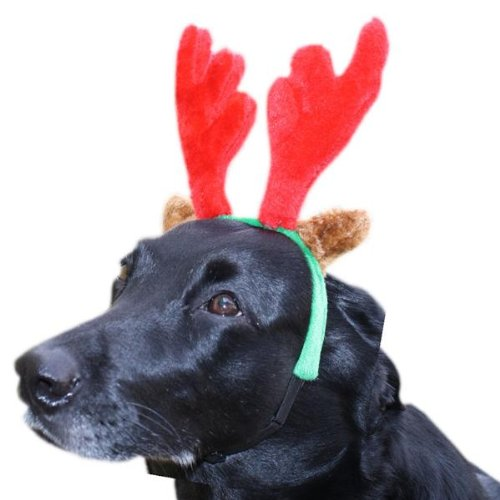Plüsch Elchgeweih Rentier für Hunde