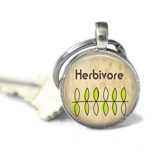 because meet you Herbivore Keychains,Key Ring, Gifts for her,Key Fob