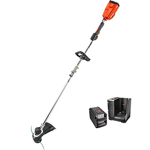 Cheap ECHO 2 AH Cordless String Trimmer w