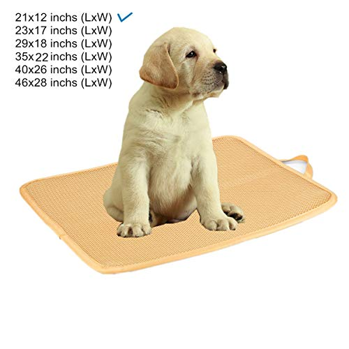 Kimi Homes Dog Crate Mat - Easy Cleaning Dog Kennel Pad, Quick drying Pet Bed Mats with Mesh Technology, Perfect Four Season Functions for Dogs, Cats and More - 22 Inchs