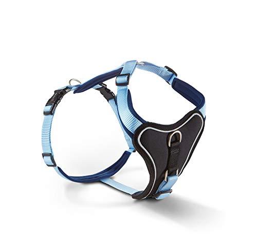 WOLTERS Geschirr Professional Comfort versch. Größen und Farben, Größe:70-85 cm, Farbe:Sky Blue/Marine