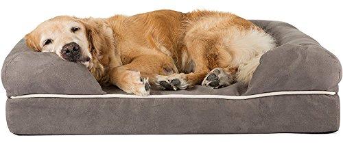 Friends Forever - Cama ortopédica para perro, funda extraíble, 100% ante, colchón de espuma viscoelástica de 6,35 a 12,7 cm