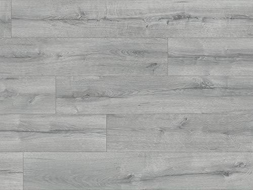 Kaindl Klick Laminat grau | 2,4qm Eiche Laminat Bodenbelag Oak avalon ✓schnelle klick Montage ✓klassisch & authentisch ✓für zeitloses & modernes Wohnen | grauer Klicklaminat 8mm
