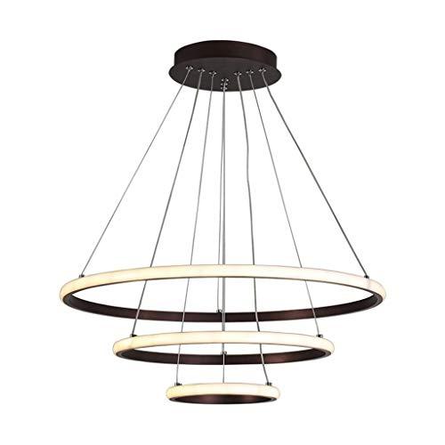 * Lámpara colgante anillo colgante luz LED lámpara para salón, dormitorio, restaurante, hotel, LED redonda, lámpara de iluminación cálida creativa (color Warm Light).
