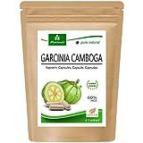 Garcinia Cambogia 90 capsule vegetali (4:1 estratto, 60% HCA) polvere di frutta con calcio, blocko grasso, fat blocker - garantito senza agenti distaccanti e stearati (1x90)