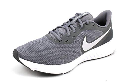 Nike Revolution 5, Scarpe da Corsa Uomo, Multicolore (Cool Grey/Pure Platinum/Dark Grey 005), 43 EU
