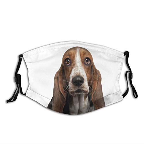 Basset Hound Dog White Face Mask With Filter Pocket Washable Reusable Face Bandanas Balaclava With 2 Pcs Filters