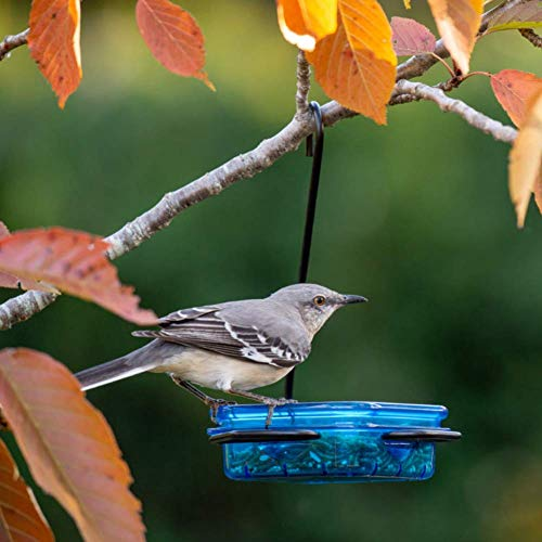 More Birds Snacks 'N' Treats Single Serving Hanging Bird Feeder, Suet, Bird Seed, Jelly, Mealworms