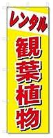 のぼり のぼり旗 レンタル 観葉植物 (W600×H1800)