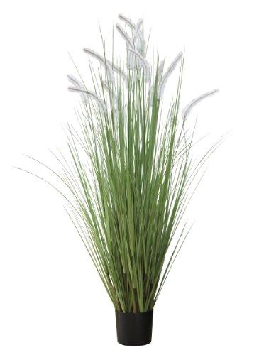 萩原 CATTAIL GRASS キャットグラス 高さ約153cm 光触媒加工付き 人工観葉植物 1鉢