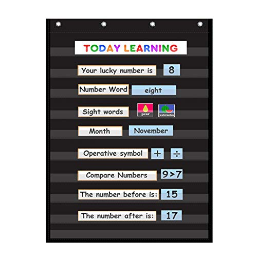 VNOM Standard Pocket Chart Clear 10 Pockets Chart for Classroom & Home Heavy Duty Hanging Pocket Chart for Word Wall/Letter Cards/Sentence Strips,28x43 Inch(Black)