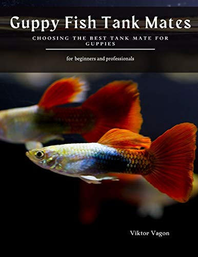 Guppy Fish Tank Mates: Choosing the Best Tank Mate for Guppies
