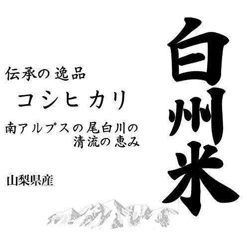 【精米】山梨県産 日本名水100選 無洗米(袋再利用) 白米 白州米 こしひかり 10kg(長期保存包装)x2袋 令和2年産