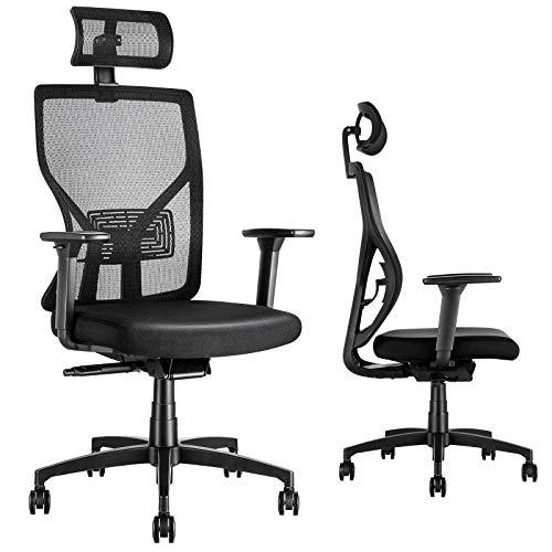 MOLENTS Office Desk Chair Ergonomic Task Chair Breathable Mesh, Adjustable Lumbar...
